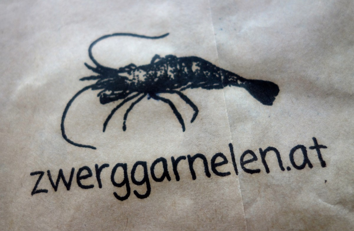 zwerggarnelen.at Logo