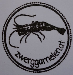 Logo zwerggarnelen.at